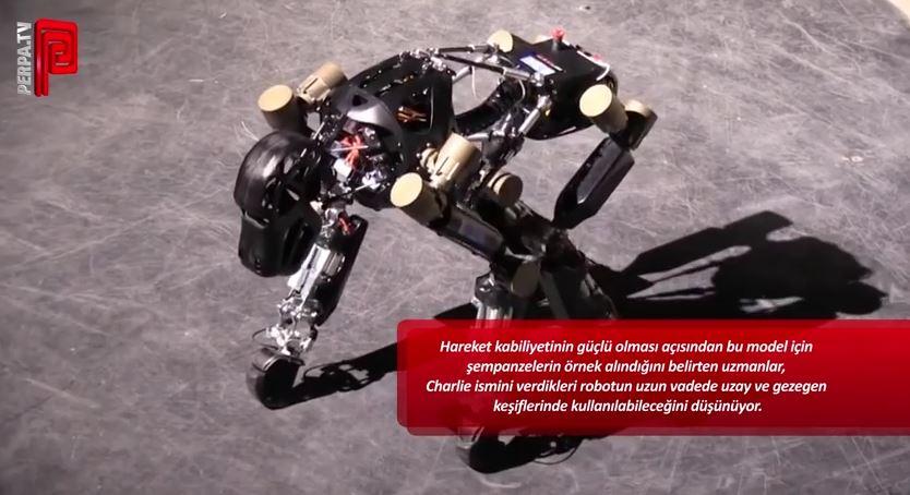 robot_sempaze