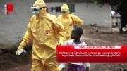 Ebola aşısında başarı