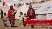 Türkiye, BM'ye 1 Milyar dolarlık gıda sattı
