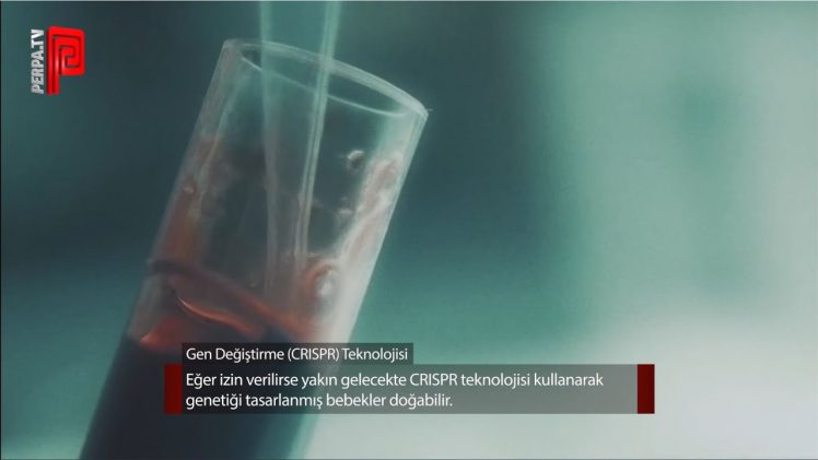 Gen Değiştirme (CRISPR) Teknolojisi Hakkında Her Şey