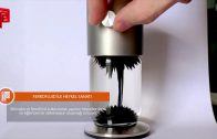 Ferrofluid ile Heykel Sanatı