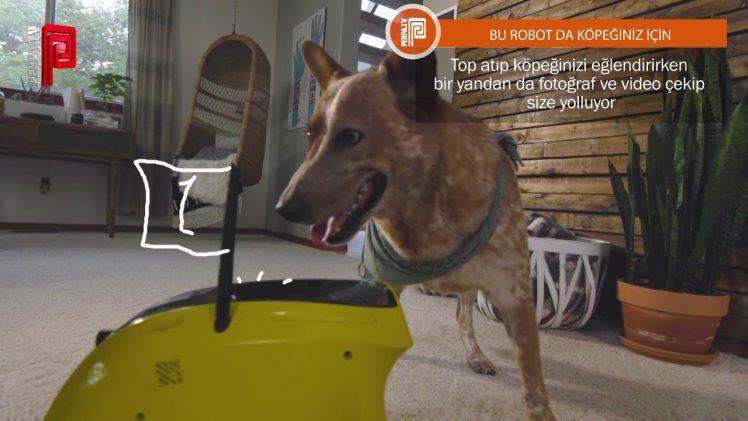 Bu Robot da Köpeğiniz İçin