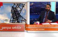 Elektrik Ekipmanları Sektörü I