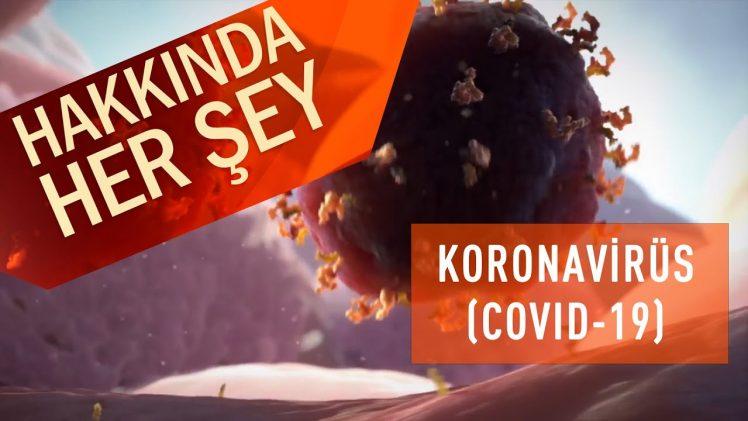 Koronavirüs (COVID 19) Hakkında Her Şey