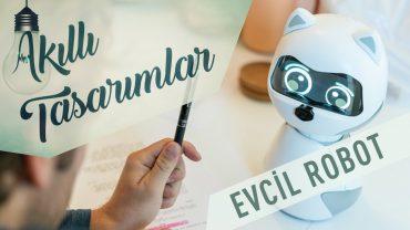 Sahibinden Öğrenen Evcil Robot