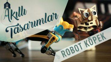 Öğrenebilen Robot Köpek